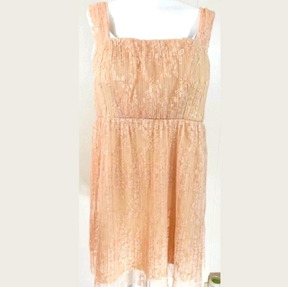 Forever 21 Dresses & Skirts - Forever 21 Plus Blush Lace Pleated Dress